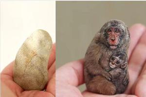 她把普通的石头变动物 神奇的手法惊叹网友