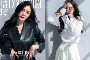 年末最后一搏 杨幂问鼎12月刊封面之王