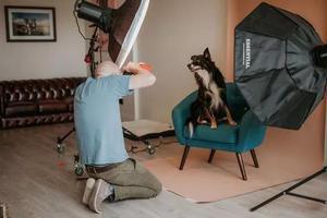 宠物摄影师成职业新趋势 他们告诉你可不好当!