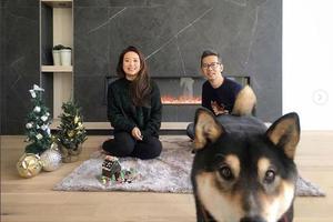 这只柴犬的画卖了两万元?有望成为汪界艺术家