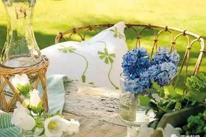 自带田园风光的小院 给家里安排起来吧