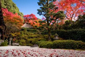 日本15个雅致的枯山水庭院 来感受它的风采魅力