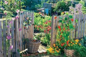 努力成为一个有花园的人吧