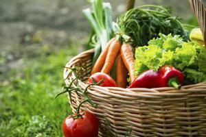 在家种个菜都这么美 还要什么花园?