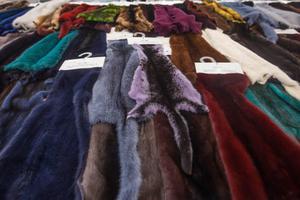 脱欧后英国或将全面禁止动物毛皮销售