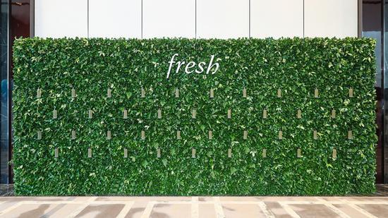 Fresh明星单品王牌红茶酵母精华,三重抵御污染、八维焕发光采1