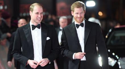 哈里王子与威廉王子