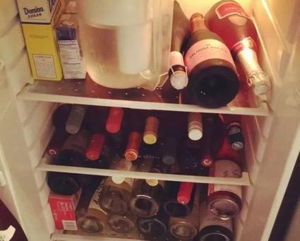 对,酒鬼的冰箱大概是这样
