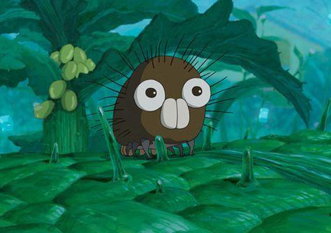 《毛毛虫菠萝》