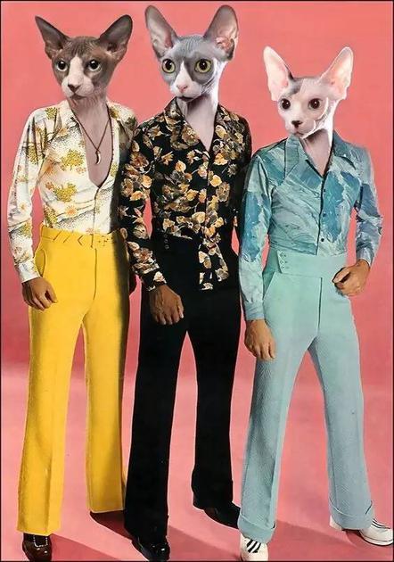 Disco风的花衬衫