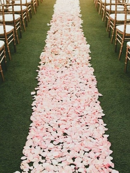 花瓣铺成的婚礼地毯