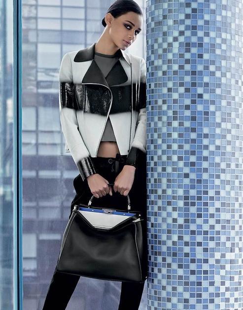 前Dior总裁升任Fendi董事会主席兼CEO