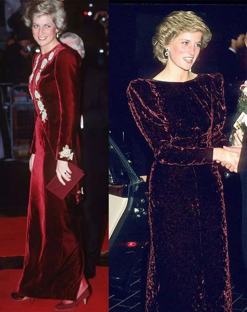 戴安娜王妃穿天鹅绒