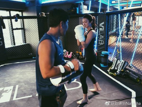 活力拳击 雕塑紧致体型