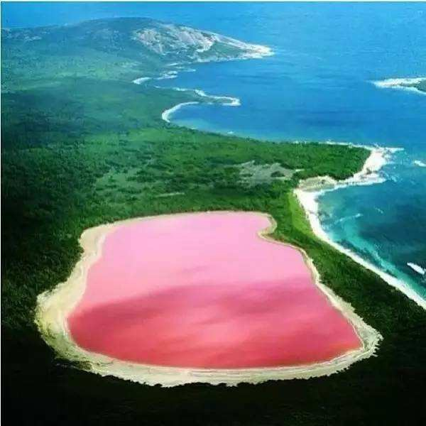 澳大利亚希勒湖