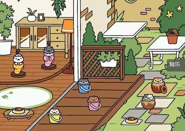 《猫咪后院》