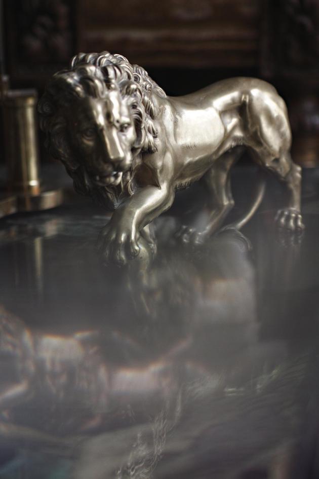 灵感来源狮子