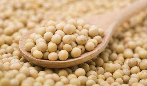 中国2020/21年度大豆进口量预估上调至9,900万吨