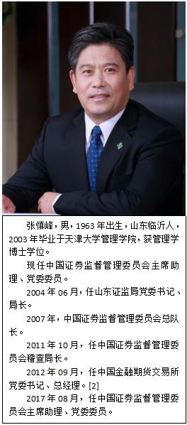 张慎峰简介