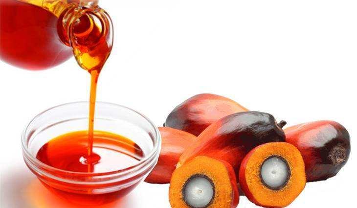 马来西亚今年毛棕榈油产量预计将增长1.7%至2020万吨