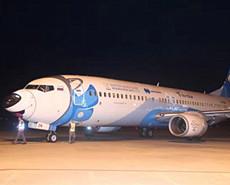 俄罗斯故障客机成功迫降