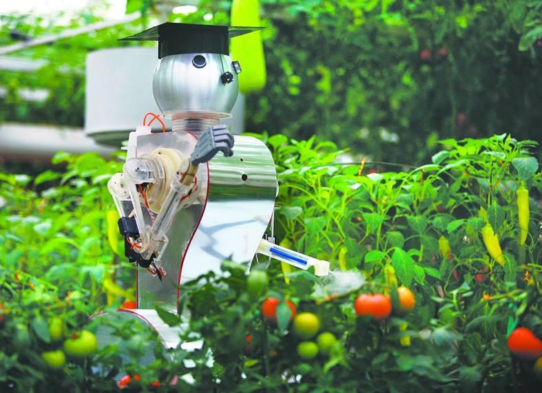 """碧桂园与杨国强为何执着于""""副业""""机器人?"""