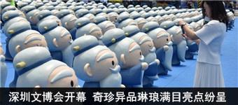 深圳文博会开幕 奇珍异品琳琅满目亮点纷呈