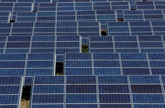 ▲太阳能板(路透社)