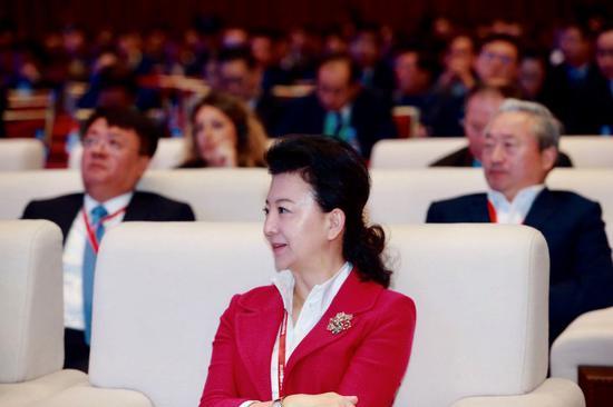 程虹在2019中国绿公司年会