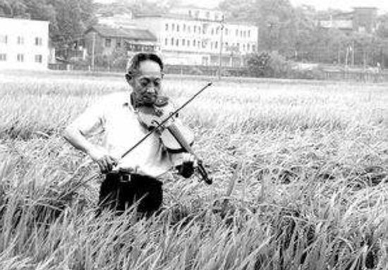 ▍记者们依然喜欢让袁隆平站在稻田里锯小提琴
