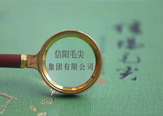 """卖茶叶不如卖白酒?""""信阳毛尖""""拟更名""""国龙茅台""""惹争议"""
