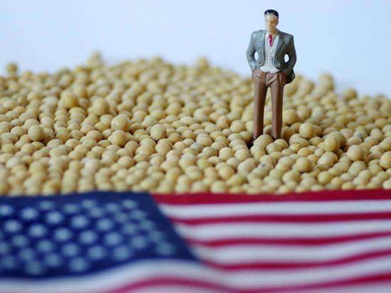 人民日报:构建多元化进口大豆供应体系