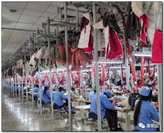 美女、情趣内衣、小提琴…中国超猛情趣横扫全吊带睡衣棺材小镇透明图片