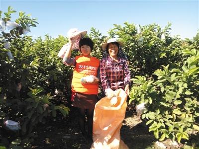 村民通过陈晓冬(左一)卖水果实现增收。