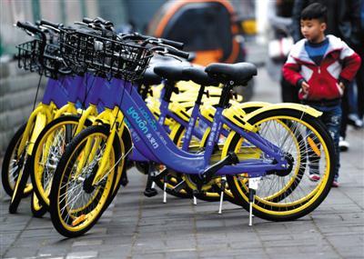 4月11日,在河南省洛阳市街头,出现了4家共享单车品牌。图/视觉中国