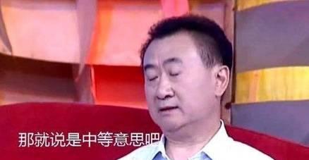 中等意思王健林