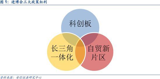 """安信策略:上海自贸区 扩大开放""""领头雁""""再展翅"""