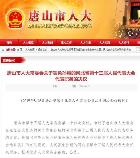 80后百亿总裁孙翔被曝双重国籍 如何当上人大代表?
