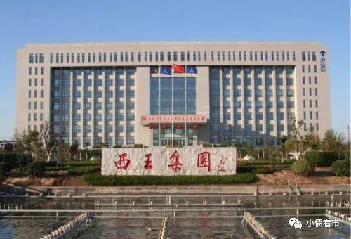 ewin游戏平台-步步高王填:民企融资仍困难 政府应引导金融机构让利