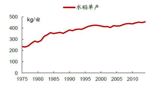 ▍相对的是,中国的玉米每亩单产从 1970 年代的 205 公斤,提高到 2004 年后的 382 公斤,中国的小麦每亩单产,从 1970 年代的 123 公斤,提高到 2000 年后的 354 公斤