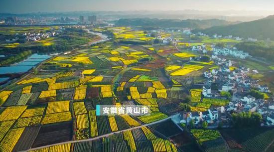 七喜娱乐平台官网_太保寿险浙江分部被罚18万:编制或者提供虚假的报告