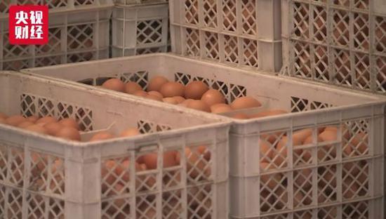 鸡蛋价格半月涨40% 业内:未来价格平稳回调是趋势