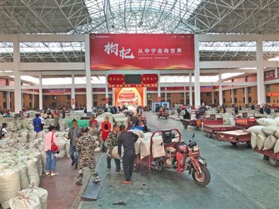宁夏枸杞市场乱象:外地枸杞混卖 个别商贩制毒枸杞