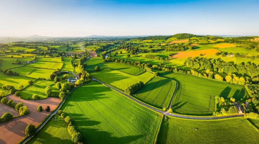 农业银行全面推进乡村振兴金融服务