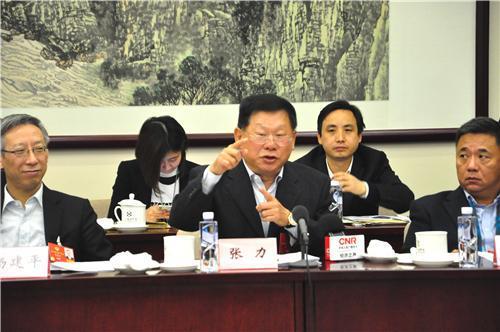 第十三届全国政协委员、富力地产集团联席董事长兼总裁张力。黄芳芳 摄