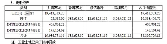 合并报表项目(无形资产)注释(审计报告P5)