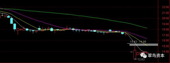 猛狮科技股票走势图