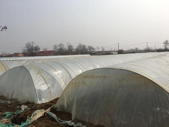 申万宏源孟祥娟回乡:农村农业农民 一切都在起变化