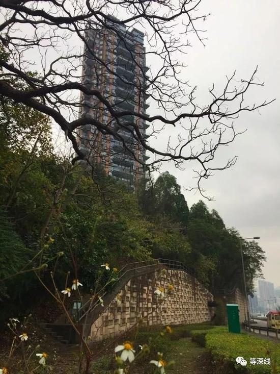 赵薇黄有龙在香港居住的皇璧大厦。 《等深线》记者 周远征 摄影