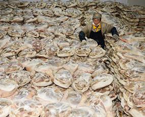 宣威火腿厂年销售2亿光盐用75吨